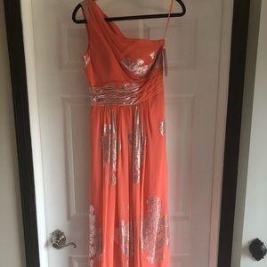 NWT Eliza Formal Dress